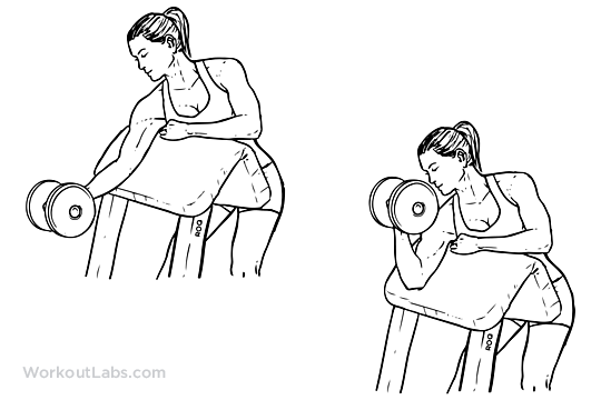 One_Arm_Dumbbell_Preacher_Curl1.png