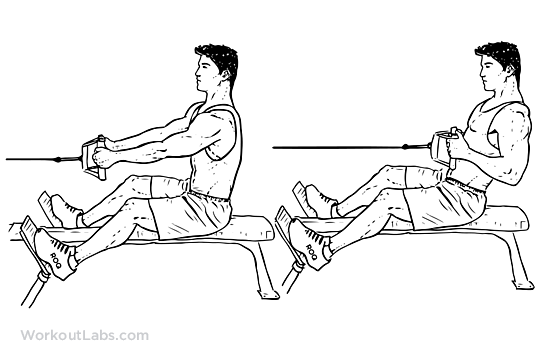 Seated_Low_Cable_Row